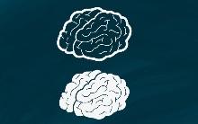 Что такое пассивный и активный словарный запас