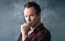 Текст и перевод песни Sting — Shape Of My Heart